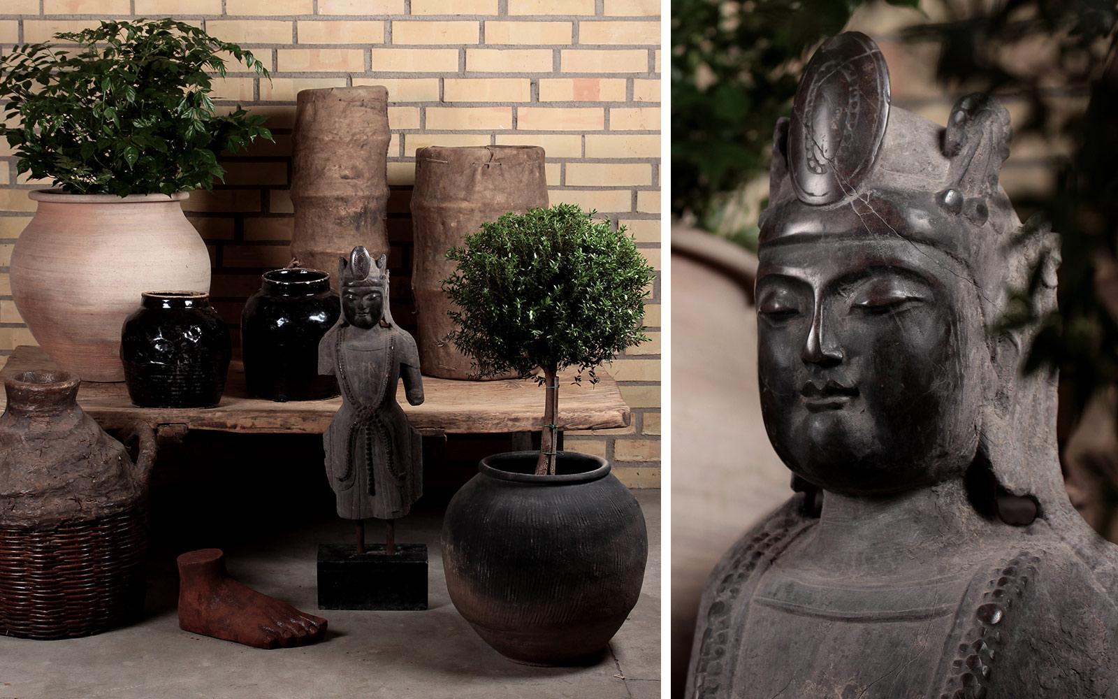 garden-annuzza