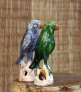 green-blue-parrot-annuzza