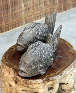 stone-fish-annuzza