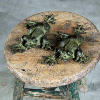 bronze-frog-close